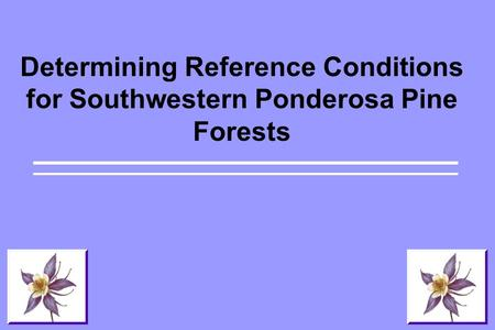 Determining Reference Conditions for Southwestern Ponderosa Pine Forests.