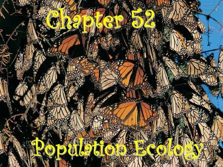 Chapter 52 Population Ecology. Population ecology is the study of the fluctuations in population size and composition and their ecological causes A population.