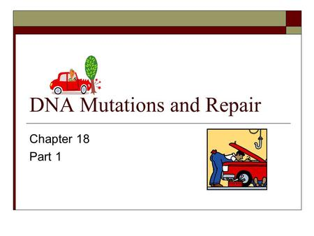 DNA Mutations and Repair Chapter 18 Part 1. Gene Mutations and Repair  Nature of mutations  Causes of mutations  Study of mutations  DNA repair.