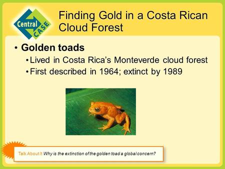 Finding Gold in a Costa Rican Cloud Forest Golden toads Lived in Costa Rica's Monteverde cloud forest First described in 1964; extinct by 1989 Golden toads.