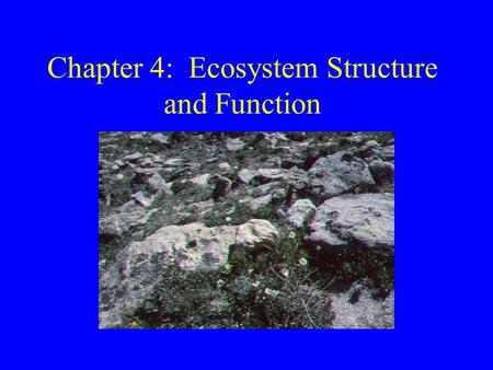 Chapter 4: Ecosystem Structure and Function. Ecosystems Study of how organisms interact with each other and with the biotic EVR Organism -> species->