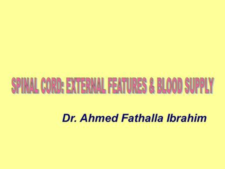 Dr. Ahmed Fathalla Ibrahim. NERVOUS SYSTEM STRUCTURAL CLASSIFICATION:STRUCTURAL CLASSIFICATION: 1.CENTRAL NERVOUS SYSTEM (CNS): Brain, spinal cord 2.PERIPHERAL.