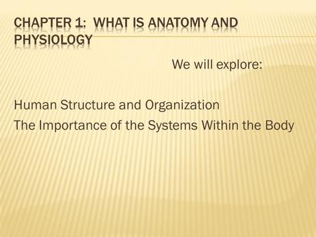 We will explore: Human Structure and Organization The Importance of the Systems Within the Body.