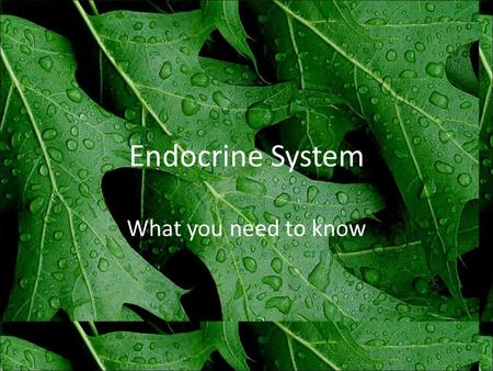 Endocrine System What you need to know. Role of Hormones help maintain homeostasis – by causing or preventing change in target cells.