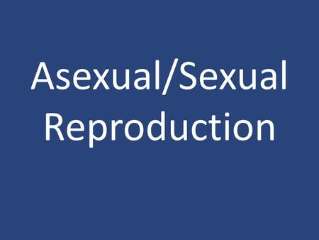 Asexual/Sexual Reproduction. Bacteria Bacteria reproduce Asexually and Sexually. Asexual – Binary Fission Sexual – Conjugation.
