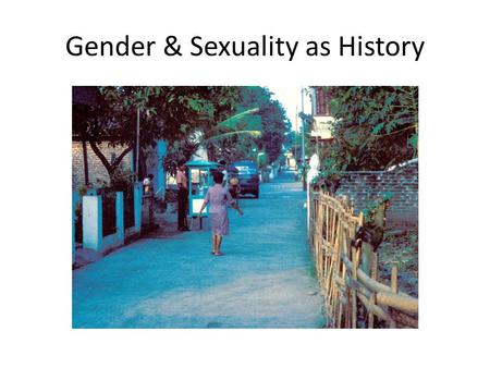 "Gender & Sexuality as History. Three important ""positions' in the academy on gender/sexuality as history Origins of patriarchy Historical materialism."