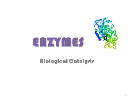 ENZYMES Biological Catalysts 1. ENZYMES ENZYMES are important proteins Many chemical reactions in living cells (and organisms) are regulated by ENZYMES.