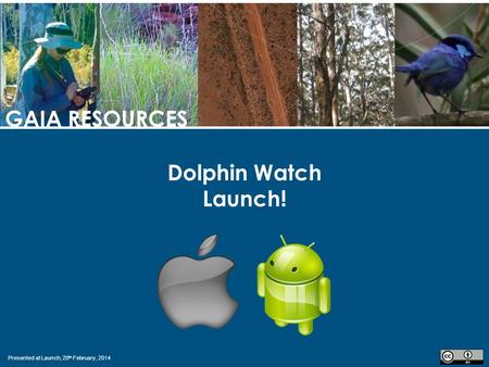 Presented at Launch, 20 th February, 2014 GAIA RESOURCES Dolphin Watch Launch!