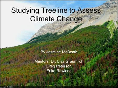 Studying Treeline to Assess Climate Change By Jasmine McBeath Mentors: Dr. Lisa Graumlich Greg Peterson Erika Rowland.