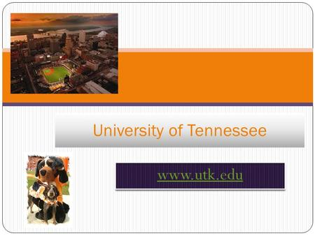 University of Tennessee. The History! The original school was established in 1794 Its original name was Blount College The present day 40-acer site.