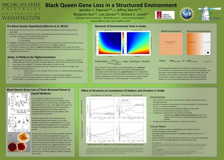 Black Queen Gene Loss in a Structured Environment The Black Queen Hypothesis (Morris et al. 2012): 1)All biological functions have a cost. If all things.