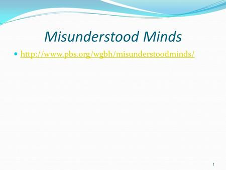 Misunderstood Minds  1.