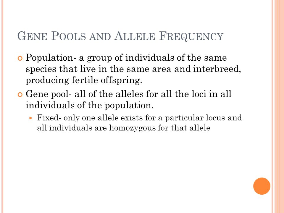 H ARDY -W EINBERG P RINCIPLE H-W Equilibrium describes a constant frequency of alleles within a gene pool.