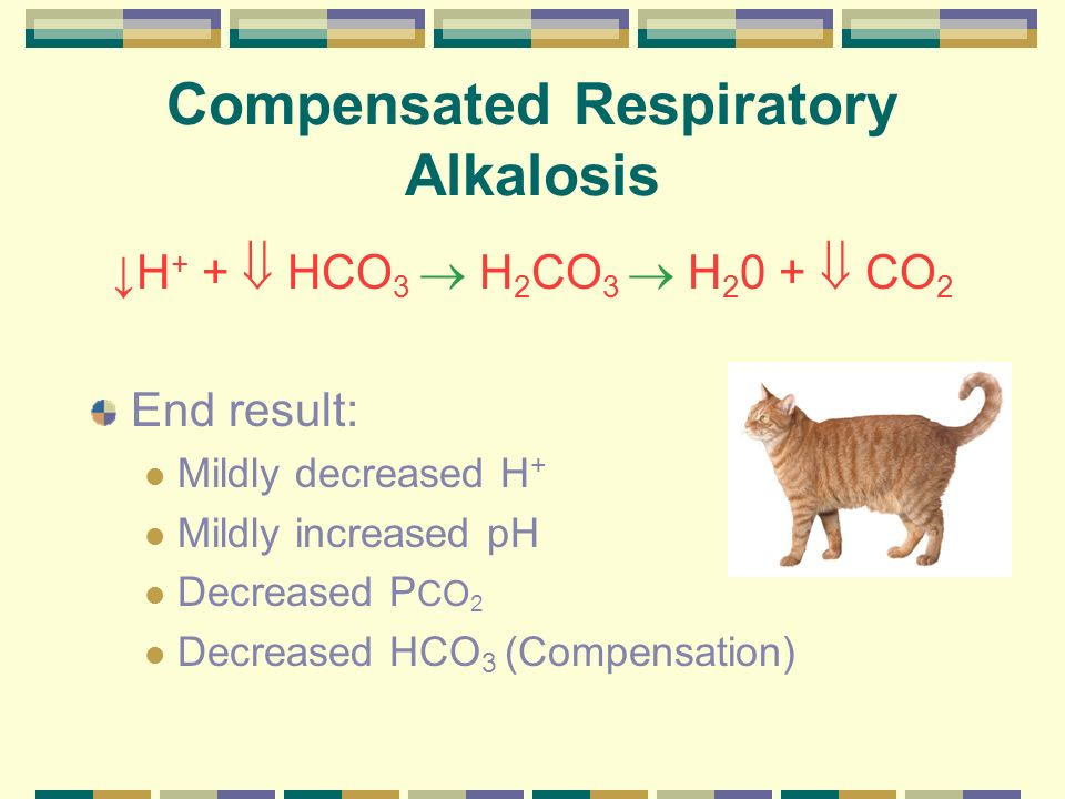 Acid-Base Physiology Respiratory acidosis Defined as a CO 2