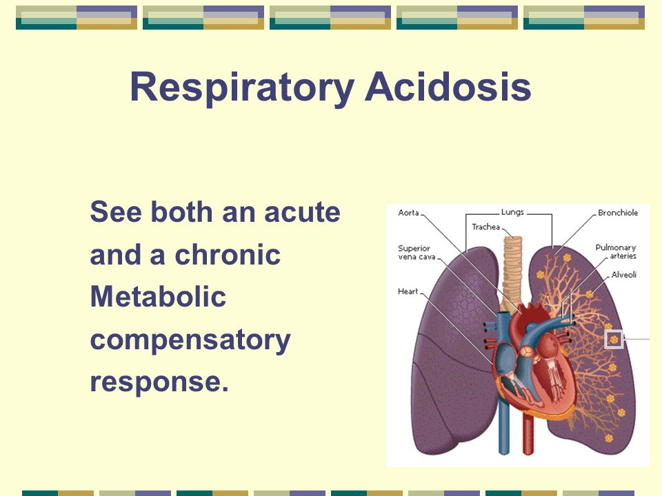 Respiratory Acidosis Acute compensation Can not use HCO 3 buffers Use proteins such as hemoglobin H 2 CO 3 + Buf HBuf +HCO 3 Can cause an increase in HCO 3 1Meq/L per 10 mmHg P CO 2 Works poorly as a buffer