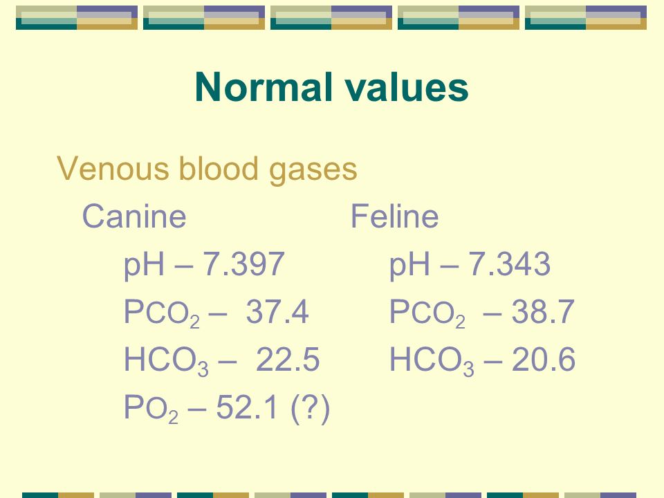 Normal values Arterial blood gases Canine Feline pH – 7.407pH – 7.386 P CO 2 – 36.8 P CO 2 – 31.0 HCO 3 –22.2HCO 3 – 18.0 P O 2 – 92.1P O 2 – 106.8