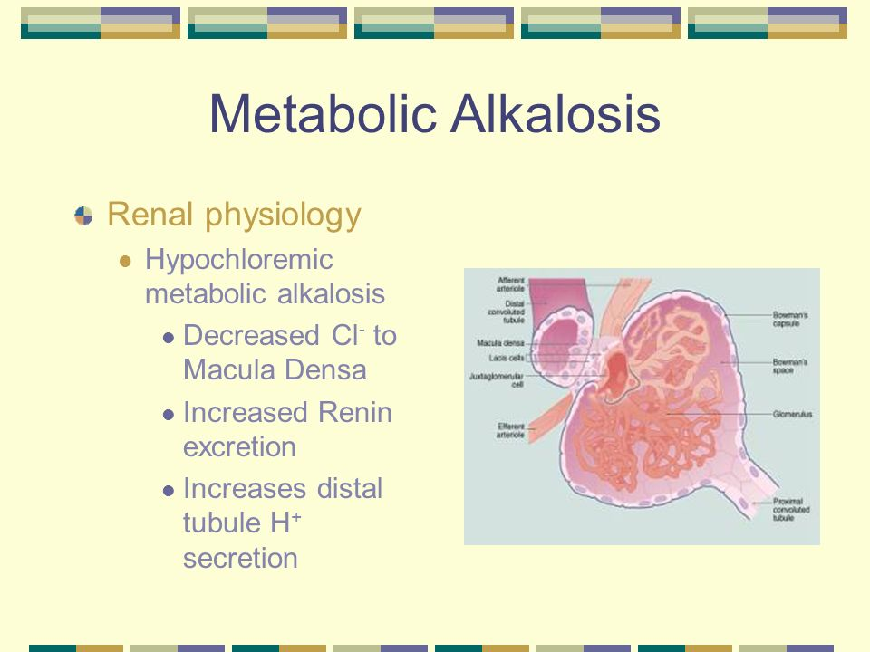 Metabolic Alkalosis Renal physiology Hypochloremic metabolic alkalosis H + -ATPase pump in collecting tubule.