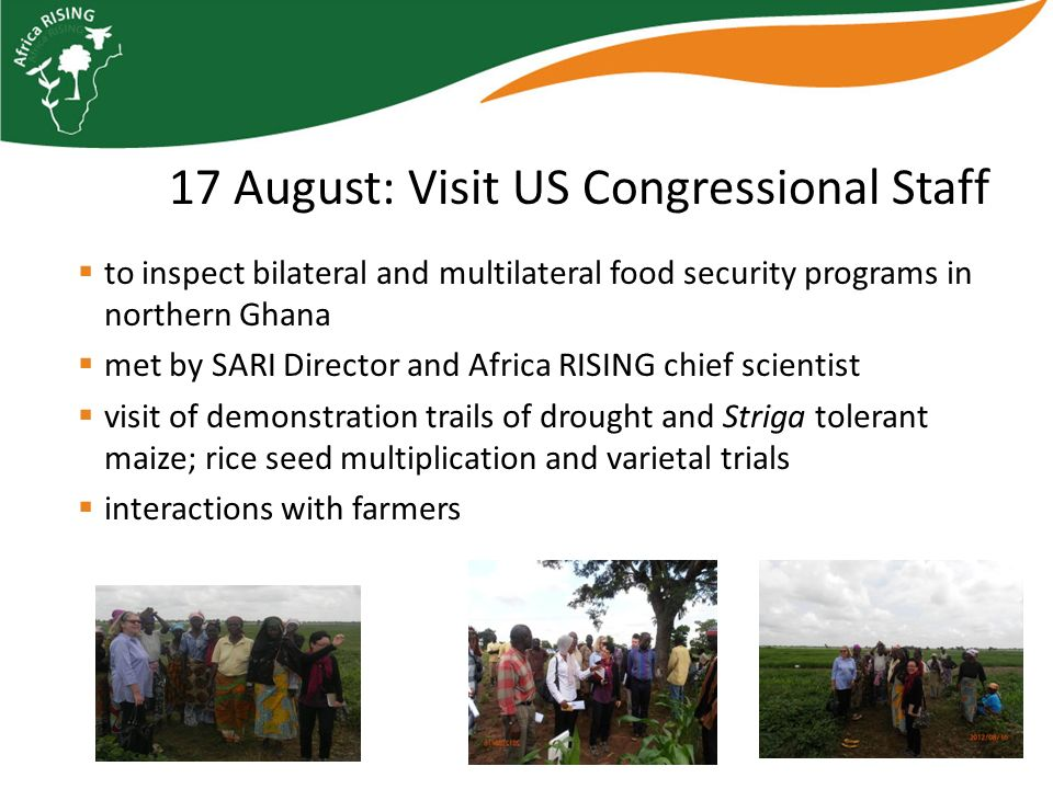 Africa Research in Sustainable Intensification for the Next Generation africa-rising.net