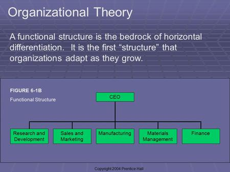 "1 Organizational Theory A functional structure is the bedrock of horizontal differentiation. It is the first ""structure"" that organizations adapt as they."