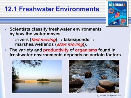 (c) McGraw Hill Ryerson 2007 Scientists classify freshwater environments by how the water moves.  { rivers (fast moving)  lakes/ponds  marshes/wetlands.