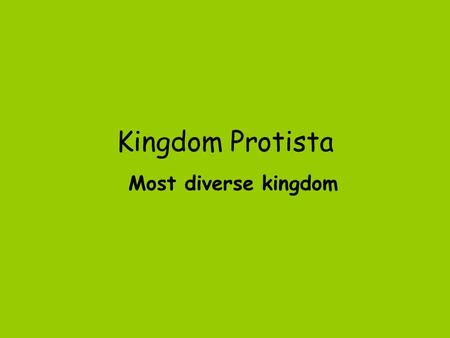 Kingdom Protista Most diverse kingdom.