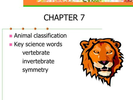 CHAPTER 7 Animal classification Key science words vertebrate