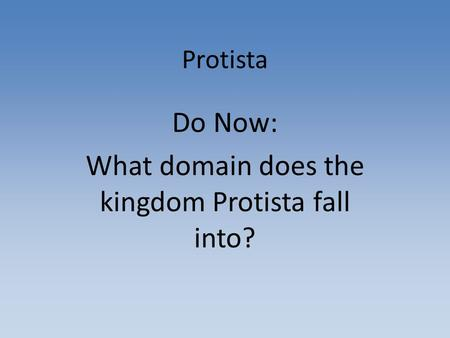 Do Now: What domain does the kingdom Protista fall into?