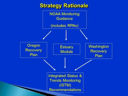 Strategy Rationale Oregon Recovery Plan Washington Recovery Plan NOAA Monitoring Guidance (includes RPAs) Integrated Status & Trends Monitoring (ISTM)