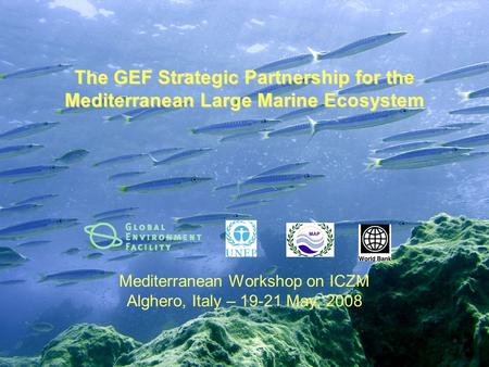 The GEF Strategic Partnership for the Mediterranean Large Marine Ecosystem Mediterranean Workshop on ICZM Alghero, Italy – 19-21 May, 2008.