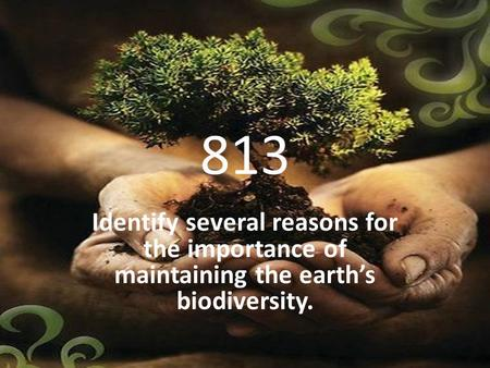 813 Identify several reasons for the importance of maintaining the earth's biodiversity.
