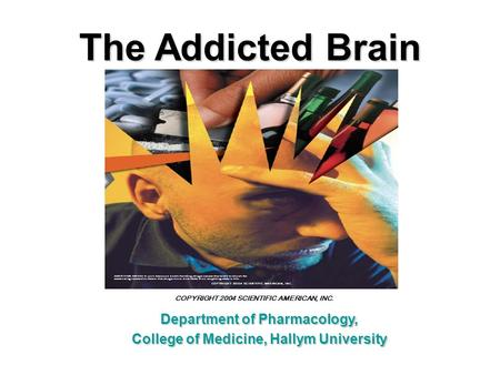Department of Pharmacology, College of Medicine, Hallym University The Addicted Brain COPYRIGHT 2004 SCIENTIFIC AMERICAN, INC.