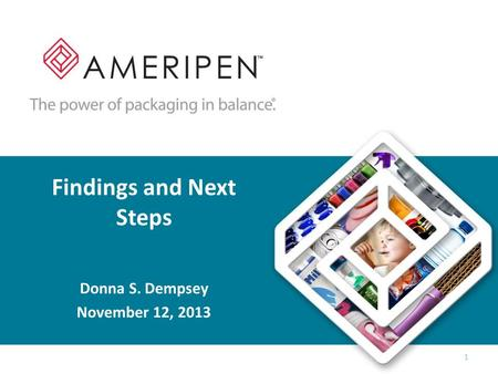 Findings and Next Steps Donna S. Dempsey November 12, 2013 1.
