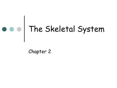 The Skeletal System Chapter 2. Imaging Consideration Diagnostic images include soft tissue and bony structure of interest. Soft tissue areas often hold.