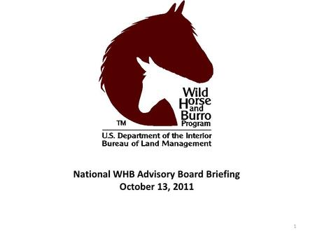 National WHB Advisory Board Briefing October 13, 2011 1.