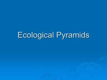 Ecological Pyramids. Energy Loss in Ecosystems I  Energy flow through an ecosystem is based on the laws of thermodynamics (physics)   First Law: Energy.