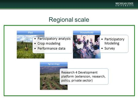 Regional scale Participatory analysis Crop modeling Performance data Plot Participatory Modeling Survey Household Research 4 Development platform (extension,