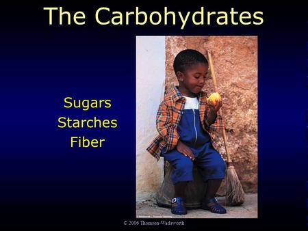 © 2006 Thomson-Wadsworth The Carbohydrates Sugars Starches Fiber.