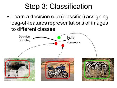 Step 3: Classification Learn a decision rule (classifier) assigning bag-of-features representations of images to different classes Zebra Non-zebra Decision.