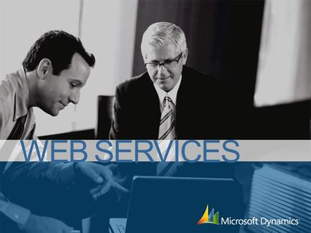 WEB SERVICES. Service Tier Web Services Client Services ApplicationApplication Meta data provider Class Library Client Tier Microsoft SQL Server Form.
