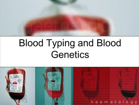 Blood Typing and Blood Genetics. Red Blood Cells (Erythrocytes) –Most abundant cells in blood; produced in bone marrow and contain protein called hemoglobin.