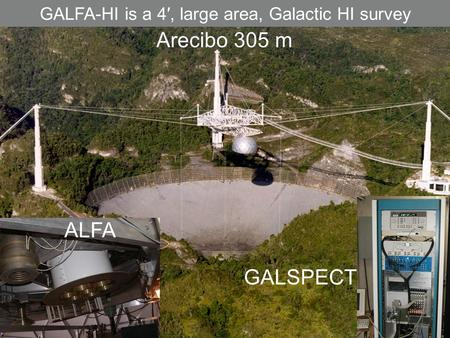 ALFA Arecibo 305 m GALSPECT GALFA-HI is a 4′, large area, Galactic HI survey.