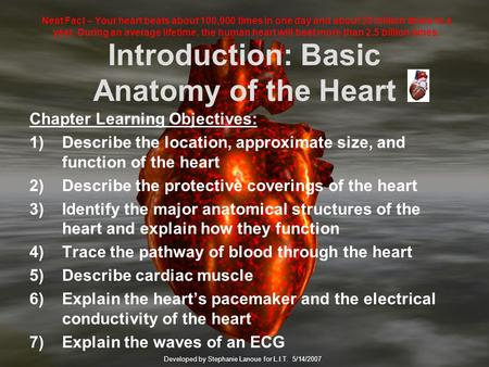 Introduction: Basic Anatomy of the Heart Chapter Learning Objectives: 1)Describe the location, approximate size, and function of the heart 2)Describe.