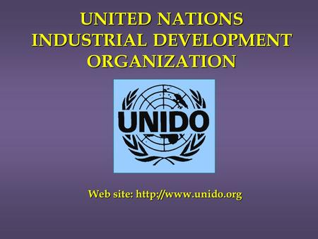UNITED NATIONS INDUSTRIAL DEVELOPMENT ORGANIZATION Web site: