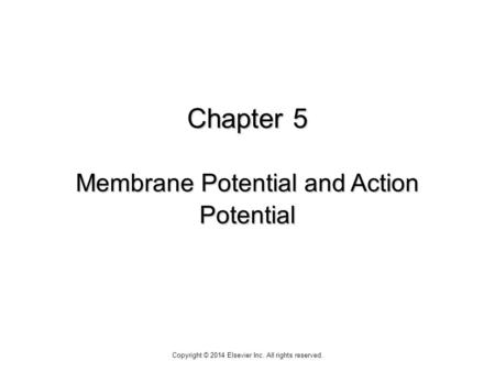 Chapter 5 Membrane Potential and Action Potential Copyright © 2014 Elsevier Inc. All rights reserved.