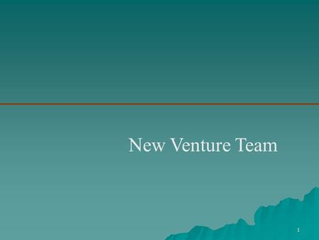 1 New Venture Team. 2  New Venture Team –Is the group of founders, key employees, and advisers that move a new venture from an idea to a fully functioning.