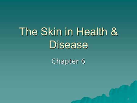 The Skin in Health & Disease