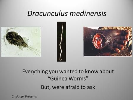 "Dracunculus medinensis Everything you wanted to know about ""Guinea Worms"" But, were afraid to ask CrisAngel Presents."