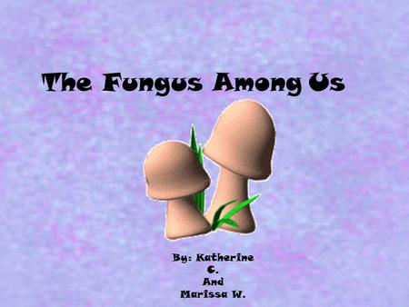 The Fungus Among Us By: Katherine C. And Marissa W.