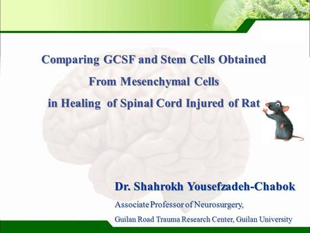 LOGO Dr. Shahrokh Yousefzadeh-Chabok Associate Professor of Neurosurgery, Guilan Road Trauma Research Center, Guilan University Comparing GCSF and Stem.
