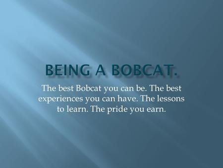 The best Bobcat you can be. The best experiences you can have. The lessons to learn. The pride you earn.